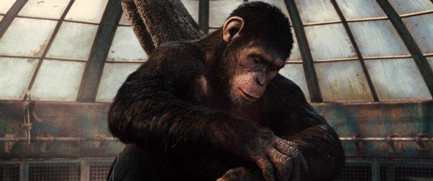 Фильм Восстание планеты обезьян (2011 год)