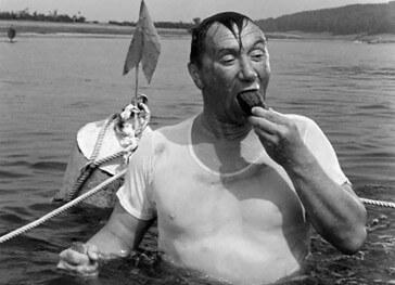 Фильм Добро пожаловать, или Посторонним вход воспрещён (1964 год)